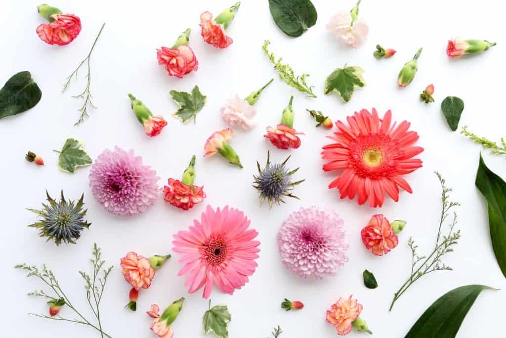 Centros de mesa con las flores más bellas del mundo